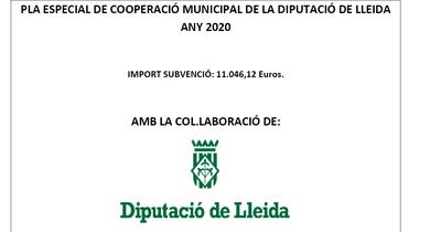 PLA ESPECIAL DE COOPERACIÓ MUNICIPAL DE LA DIPUTACIÓ DE LLEIDA ANY 2020